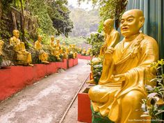 Climb the 400 steps up to the Ten Thousand Buddhas Monastery in Hong Kong, where you'll see nearly 1... - Provided by GoBankingRates