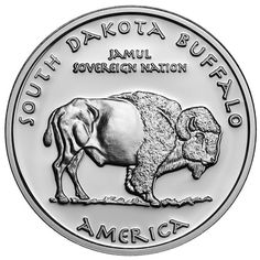 American Coins, Native Art, Sioux, South Dakota, Native Americans, Silver Coins, Buffalo, United States, Mint