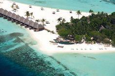 Constance Moofushi, South Ari Atoll, Maledives Maldives Luxury Resorts, Maldives Destinations, Maldives Travel, Maldives Resort, Visit Maldives, Dream Vacations, Vacation Spots, Most Beautiful Beaches, Beautiful Places