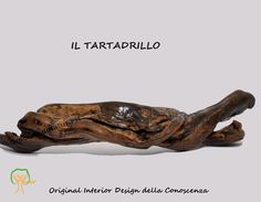 Il Tartadrillo Woodys© (#driftwood #boisflotté). Simbolo della CONOSCENZA. Leggi la storia e scegli il regalo.