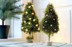 Kleine kerstboompjes van mos maken