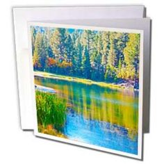 3dRose - Jos Fauxtographee Outdoor - A green an blue lake with the reflection of the pines - Greeting Cards
