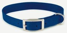 """DOG COLLARS & LEADS - NYLON - 601 3/4"""" NYLON WEB COLLAR - 18"""" BLUE - COASTAL PET PRODUCTS, INC. - UPC: 76484043420 - DEPT: DOG PRODUCTS"""