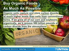 Environmental - Buy Organic Foods As Much As Possible