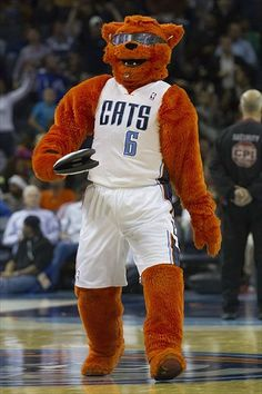 Charlotte Bobcats mascot, Rufus D. Lynx.