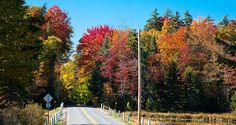 #ADK #Adirondacks #RodaxeRoad - Autumn on Rondaxe Road, with Fly Pond on the right - Old Forge, New York.