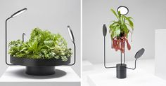 Design studio Goula / Figuera, have created a collection of matte black planters called Viride (the Latin word for green), that include artificial lights (and one with a mister) as part of their design.
