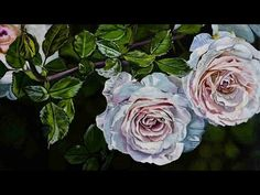 Paint by numbers of rose flower timelapse: paint by numbers tutorial - YouTube Landscaping With Roses, Realistic Rose, Thing 1, Paint By Number, White Roses, Landscape Art, Flora, Original Paintings