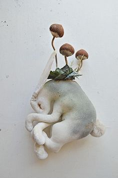 Mister Finch - I have a few pieces that I have been working on ....I wanted to cross some of my creatures with fungus and flowers....as they wait for Spring and awake from their sleep....strange sort of hybrids....