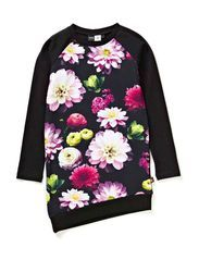 Cindelle - Black Flowering
