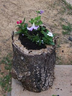DIY log planter