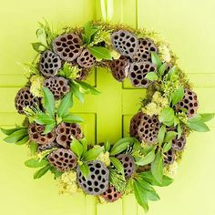 Replace the bright green with something dried up or very dark versions of red, purple, blue, green or black and this would be a creepy wreath. Lotus pods always look like the backs of Suriname Toads to me.
