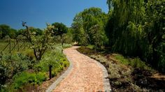 From Farm to Estate in Cape Town's Winelands: Babylonstoren and Leeu Estates Tourism In South Africa, South African Wine, Wine Tourism, Cape Town, Country Roads, Explore, Exploring