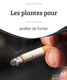 Les plantes pour arrêter de fumer Pour arrêter de fumer, vous devriez avoir recours aux plantes. Il s'agit d'une méthode douce et naturelle qui pourrait bien vous suprendre !