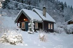A pretty little cabin