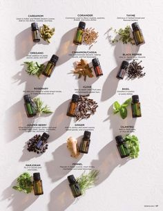 Essential oils - kitchen spices! #doterra