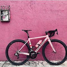 La nostra amica @thepinkcolnago continua il suo viaggio a #Miami!  Questa volta si trova al Wynwood Walls & Art District.  #TeamPeruffo  | #Colnago #colnagopresident #colnagobike #colnagobikes #colnagoworld #thepinkcolnago #colnagoc60 #bikeporn #bicishop #biciclette #bicicletta #instabici #cycling #cyclinglife #cyclinglife #cyclingshots #cyclingphotos #cyclingpics #cyclingday #bikeoftheday #bikeofdays #bikeoftheweek #bikegram #bikestagram #igersbicicletta #biker #bikers #bikefit@colnagoworld…