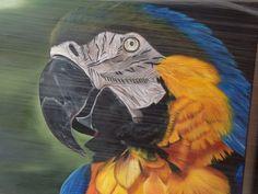 Guacamaya  ....pintora !!! Ruth Chy yong