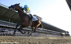 Michael Clevenger, veteran photographer of the Louisville Courier-Journal, has won a 2015 Media Eclipse Award for Photography for his picture of American Pharoah winning last year's Belmont Stakes