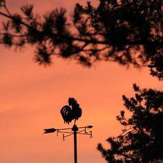 Beautiful Saturday morning to you all  #nofilter #morning #sunrise #auringonnousu #espoo #Finland #saturday #january #nature #luonto #omapiha #ikkunasta #aamuvalkenee
