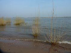 Aan de rivier Gelderland april 2015