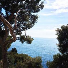 #Rocher Sunny day at #monaco #panorama by luizadaneliuc from #Montecarlo #Monaco