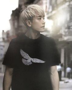 Hit Songs, Btob, Musical Theatre, Korean Singer, Korean Actors, The Dreamers, Tv Shows, Park, Concert