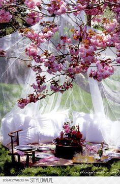 Piknik pod kwitnącymi drzewami. To jest to!