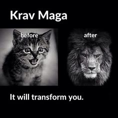 If you are interested in Krav Maga but not sure whether to get a professional training in it, these answers to Frequently Asked Questions about this self defense system would help you make up your mind. Krav Maga as a clos Krav Maga Kids, Learn Krav Maga, Krav Maga Techniques, Martial Arts Techniques, Taekwondo, Judo, Karate, Mma, Israeli Krav Maga