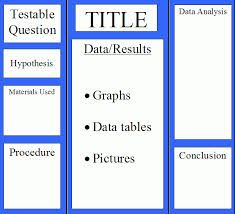 Image result for 3rd grade science fair project boards