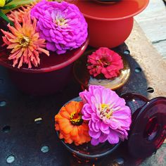 Planter Pots, Trends, News
