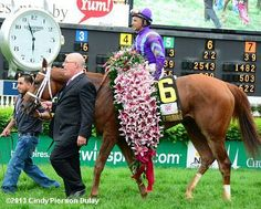 Princess of Sylmar covered in the blanket of lilies after winning the 2013 Kentucky Oaks