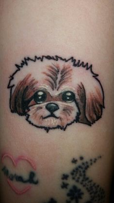 New tattoo/shih tzu ♡