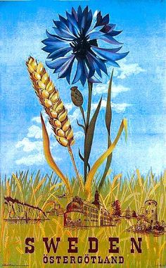 Östergötland and Cornflower - Vintage Travel Poster. Once this poster made Sweden look great, now it will do the same for your home! Tourism Poster, Poster Ads, Poster Prints, Postcard Art, Vintage Travel Posters, Illustrations And Posters, Retro, Vintage Advertisements, Vintage Art