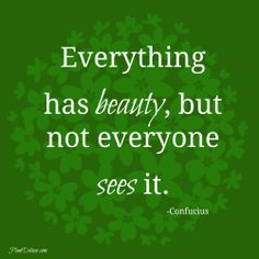 Everything has beauty, but not everyone sees it. #quote