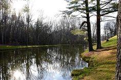 #hughes #melissa #landscape #creeks #rivers #nature #hughescountryroadsphotography