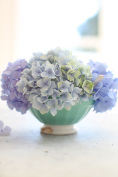 ~ hydrangeas in vintage french cafe au lait bowl