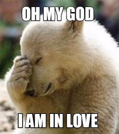 A Facepalm Bear meme. Caption your own images or memes with our Meme Generator. Jw Memes, Jokes, Funny Memes, Make Your Own Meme, Jw Humor, Scrapbooking, Meme Template, Templates, Jehovah's Witnesses