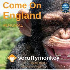 Come on England! #euro2016 #eng #england #togetherforengland @england @scruffymonkeydm #getin