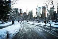 álbum de viagem: CENTRAL PARK, NYC | Modices