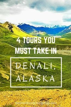 4 Tours You Must Take in Denali, Alaska. Most tourists and travelers alike seem to have dreams of visiting Alaska. There is so much to see and do in Alaska that you could fill months and months with activities. Travel Alaska, Travel Usa, Alaska Trip, Alaska Cruise Tours, North To Alaska, Visit Alaska, Alaskan Vacations, Places To Travel, Places To Go
