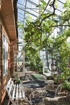 Swedish house enclosed in a greenhouse frame