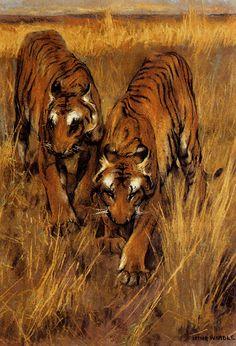 Arthur Wardle - Tigers.