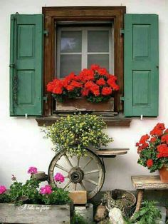 Window Boxes Ideas For Sun. Window boxes can be made from metals, wood or perhaps from solid vinyl or PVC types materials. Each of these has its own distinct features that could create a whole new ambiance to the place where it is being set up. Red Geraniums, Porche, Garden Windows, Cottage Windows, Rustic Gardens, Window View, Through The Window, Window Dressings, Window Boxes