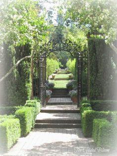 The Gilded Bloom Garden Images, Creative Home, Garden Inspiration, Beautiful Gardens, Interior Styling, Gates, My Dream, Sidewalk, Home And Garden