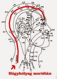 Qi Gong, Acupressure, Acupuncture, Medical Care, Alternative Medicine, Health Tips, Lotion, Massage, Arts