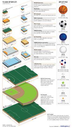 infographic design / Sports / base ball / 축구장과 야구장, 어느 경기장이 더 큰지 궁금해? - 조선닷컴 인포그래픽스