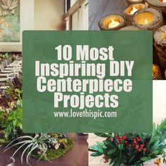 In this blog, we are sharing 10 inspiring centerpiece projects and decorations. diy centerpieces centerpiece ideas diy centerpiece