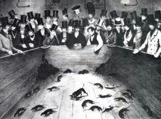 Крысоловы