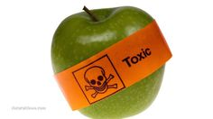 GMOs invade fruit industry: Apples, pears, cherries and peaches to all become unlabeled GMO